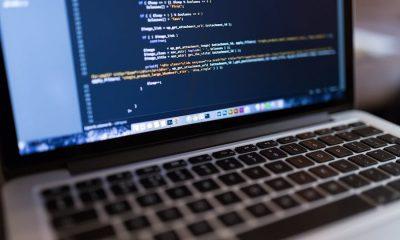 coding wordpress